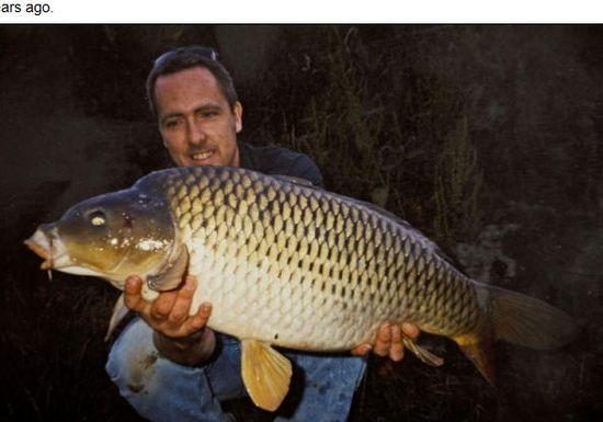英国钓友在同一水域钓到14年前放生鲤鱼