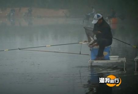 四海钓鱼频道视频220化老师钓黑坑(一)